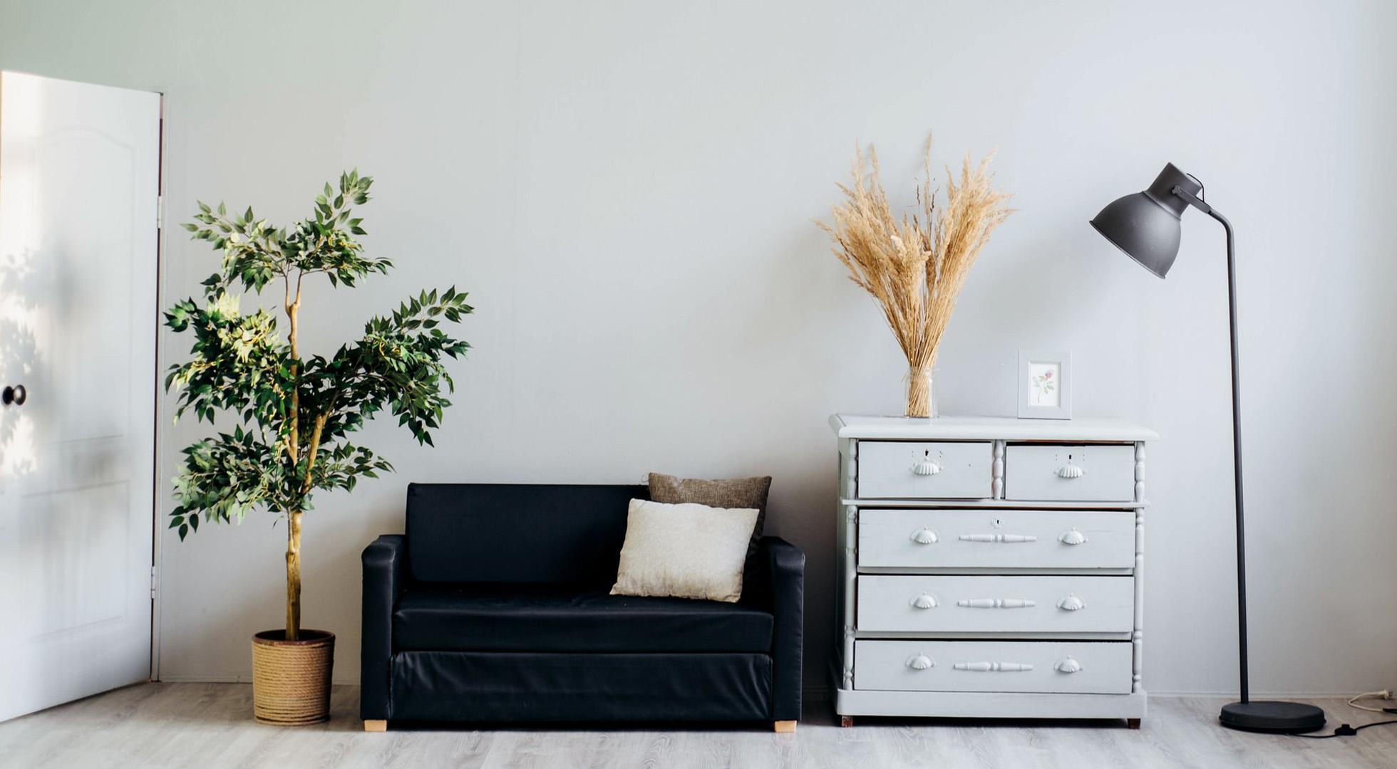 Feng Shui biljke u vašem domu